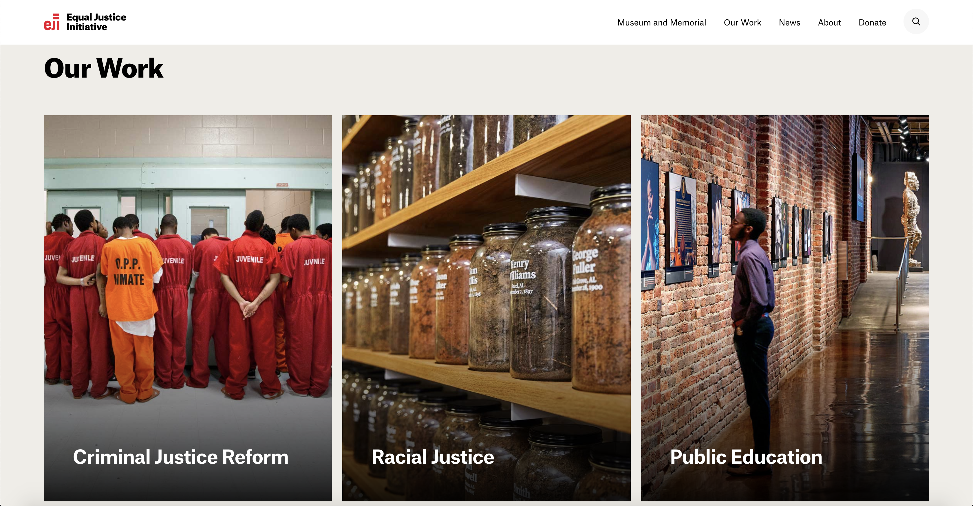 The visualization and messaging around the organization's core programs on the homepage are subtle and minimalist